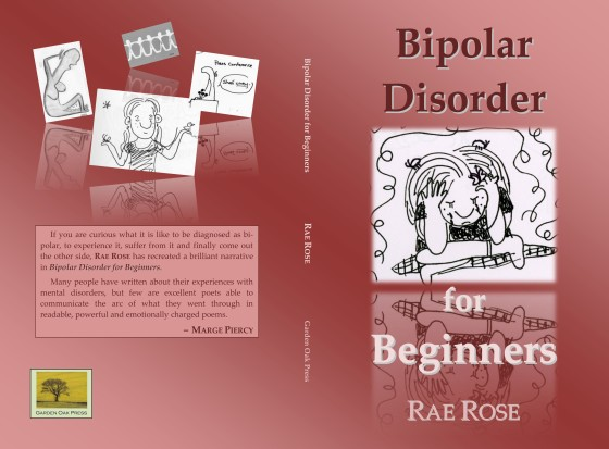 Bipolar Disorder for Beginners Cover NEW copy