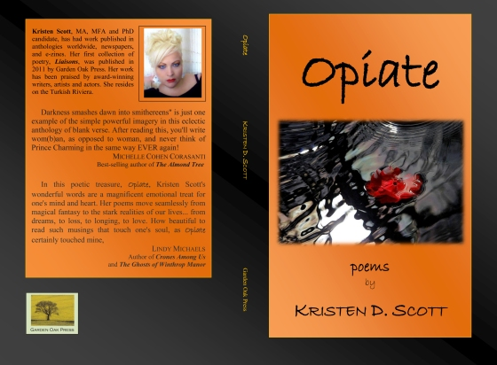 Opiate cover 2