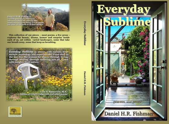 EverydaySublime cover