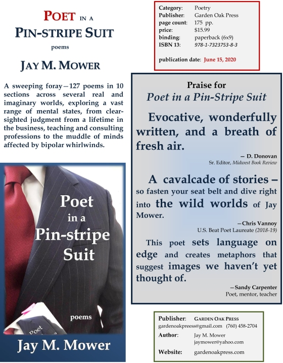 Fact Sheet Poet in a Pin-stripe Suit - REV